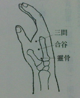 手三穴与足三穴 - 采桑子 - 采桑子